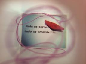 foto (5)